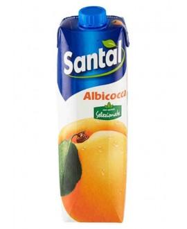 SANTAL SUCCHI ALBICOCCA LT.1