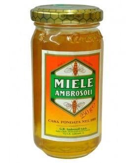 AMBROSOLI MIELE GR.250